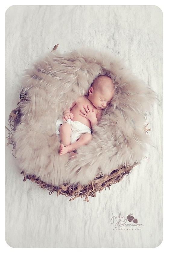 Niedliche Neugeborenenbilder