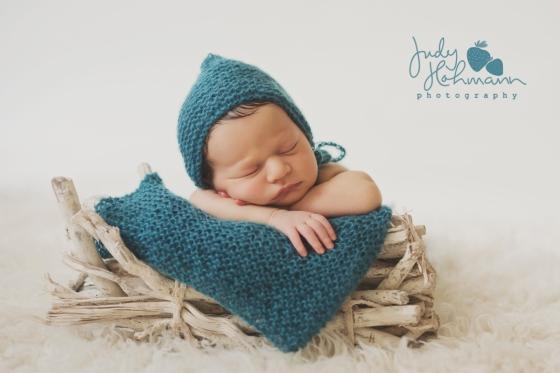 Newborn_Driftwood_jhp