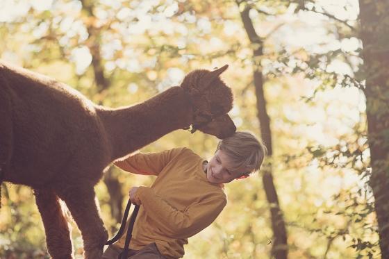 Alpaca_Boy_Kinderfotograf_Judy_Hohmann