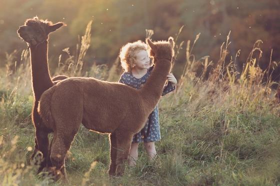 Alpaca_girl_Kinderfotografie_mit_Tier
