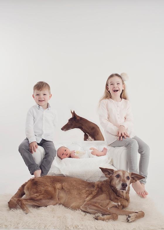 Alle_Kinder_Haustiere